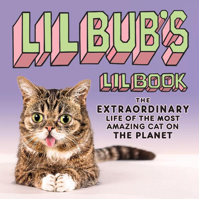 lil-bub-book_blo